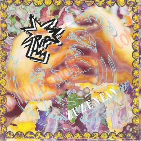 CD RIP - Hiesari aurre egiten