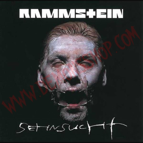 Vinilo LP Rammsteim - Sehnsucht